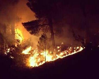 Elbasan, vatra e zjarrit në Krastë përparon në qendrën e banuar, panik te familjarët dhe bizneset
