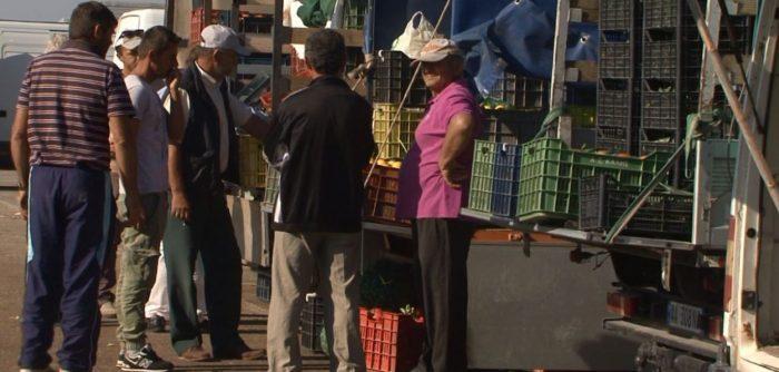 Produktet bujqësore në tregje pa asnjë kontroll