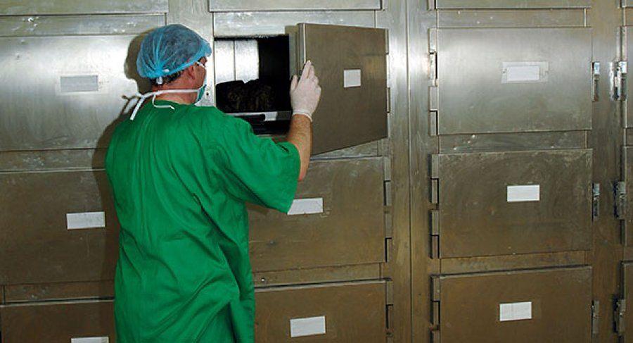 Foshnja e pajetë, tre muaj në morgun e maternitetit